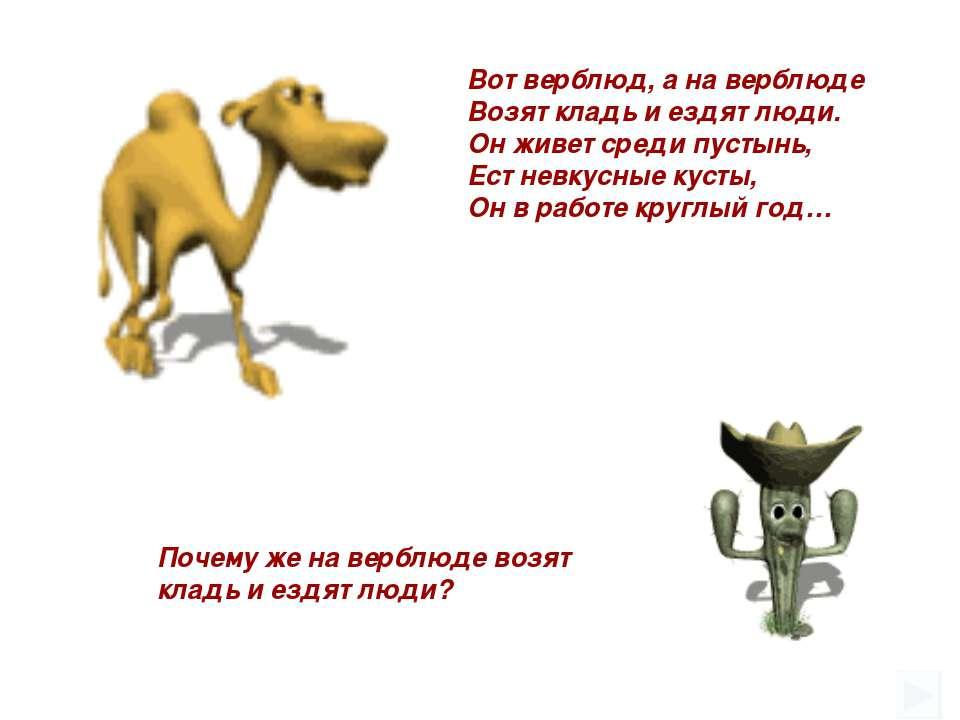 Почему же на верблюде возят кладь и ездят люди? Вот верблюд, а на верблюде Во...