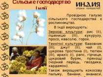 Сільське господасртво Індії Провідною галузю сільського господарства є рослин...