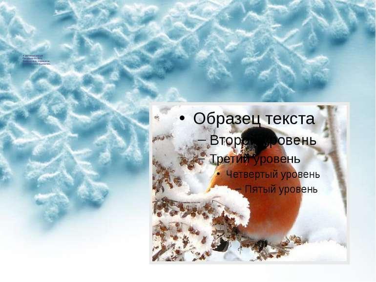 А маленькі снігурі Посідали на гіллі, Зазирнули в годівнички, Наклювалися пше...