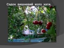 Садок вишневий коло хати,