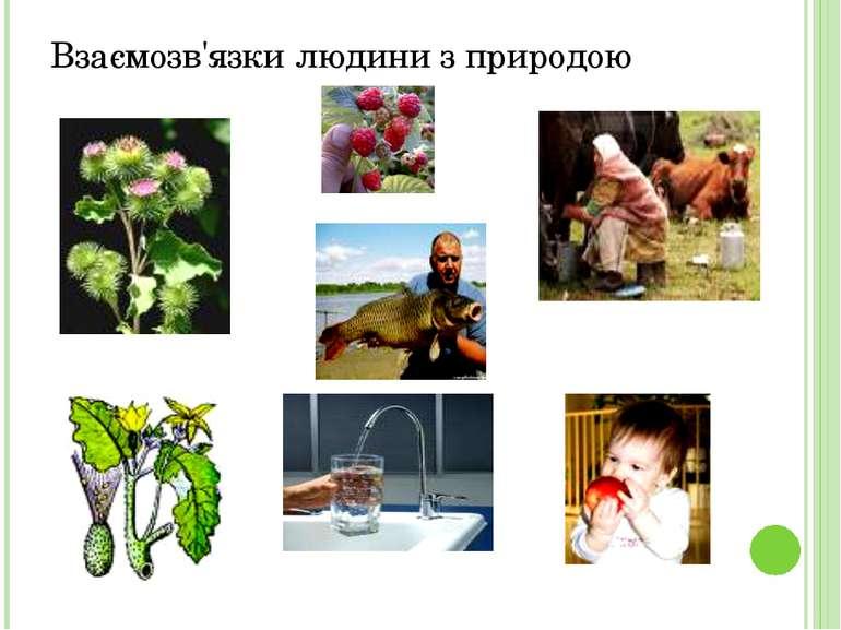 Взаємозв'язки людини з природою