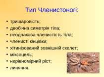 Тип Членистоногі: тришаровість; двобічна симетрія тіла; неоднакова членистіст...