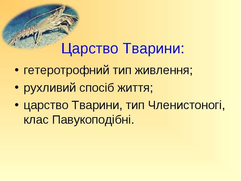 Царство Тварини: гетеротрофний тип живлення; рухливий спосіб життя; царство Т...