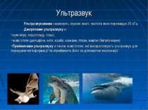 Ультразвук Ультразвуковими називають звукові хвилі, частота яких перевищує 20...