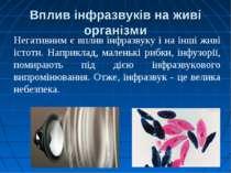 Вплив інфразвуків на живі організми Негативним є вплив інфразвуку і на інші ж...
