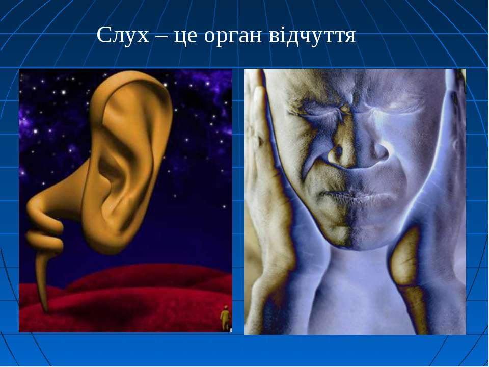 Слух – це орган відчуття