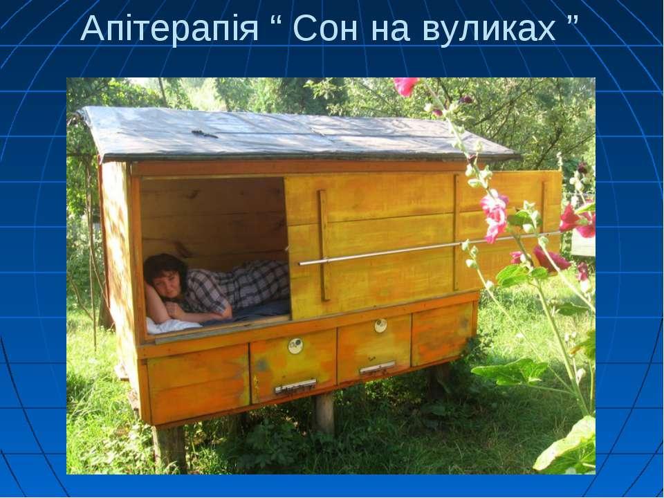 """Апітерапія """" Сон на вуликах """""""