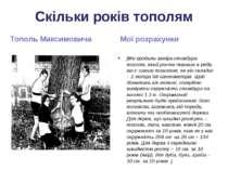 Скільки років тополям Тополь Максимовича Мої розрахунки [Ми зробили заміри ст...