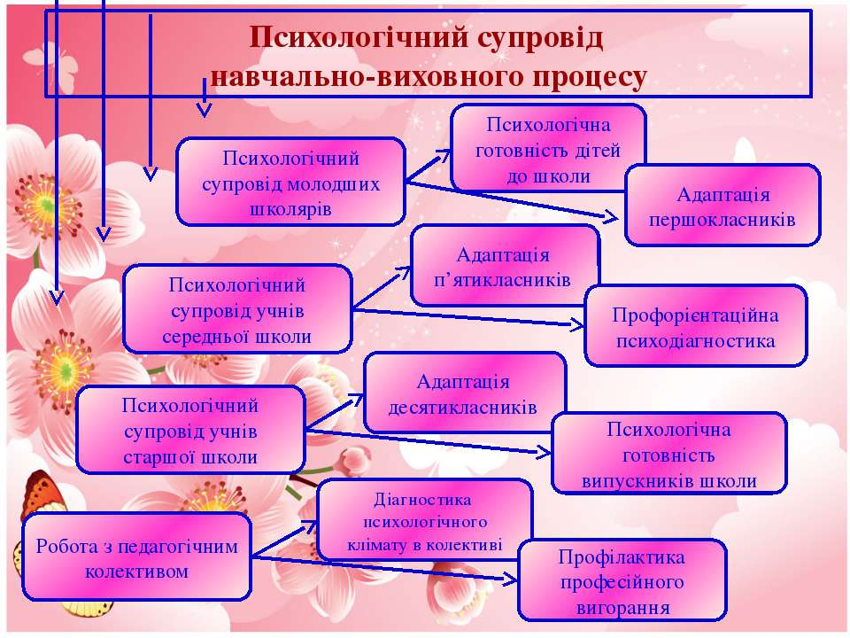 Психологічний супровід навчально-виховного процесу Психологічний супровід мол...