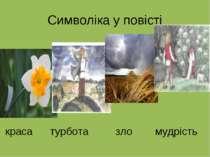 Символіка у повісті краса турбота зло мудрість