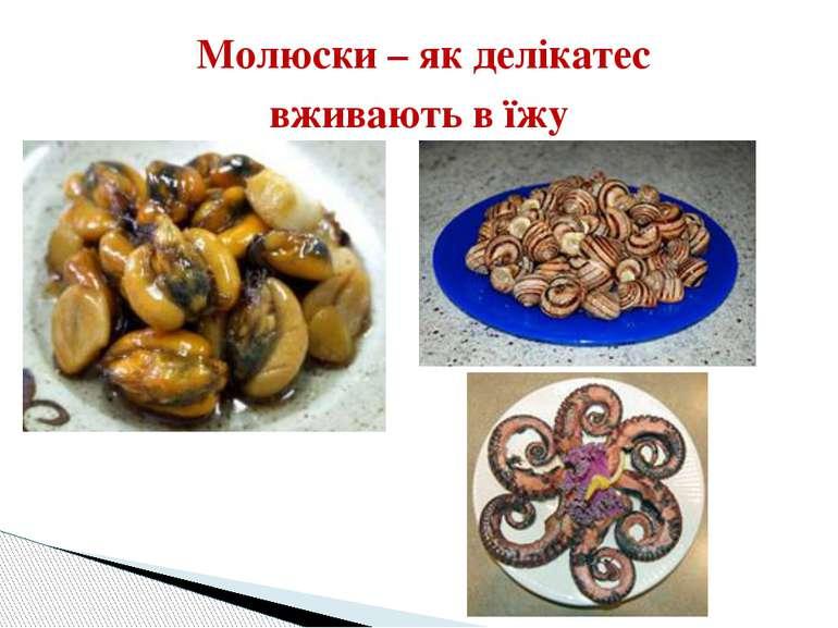 Молюски – як делікатес вживають в їжу