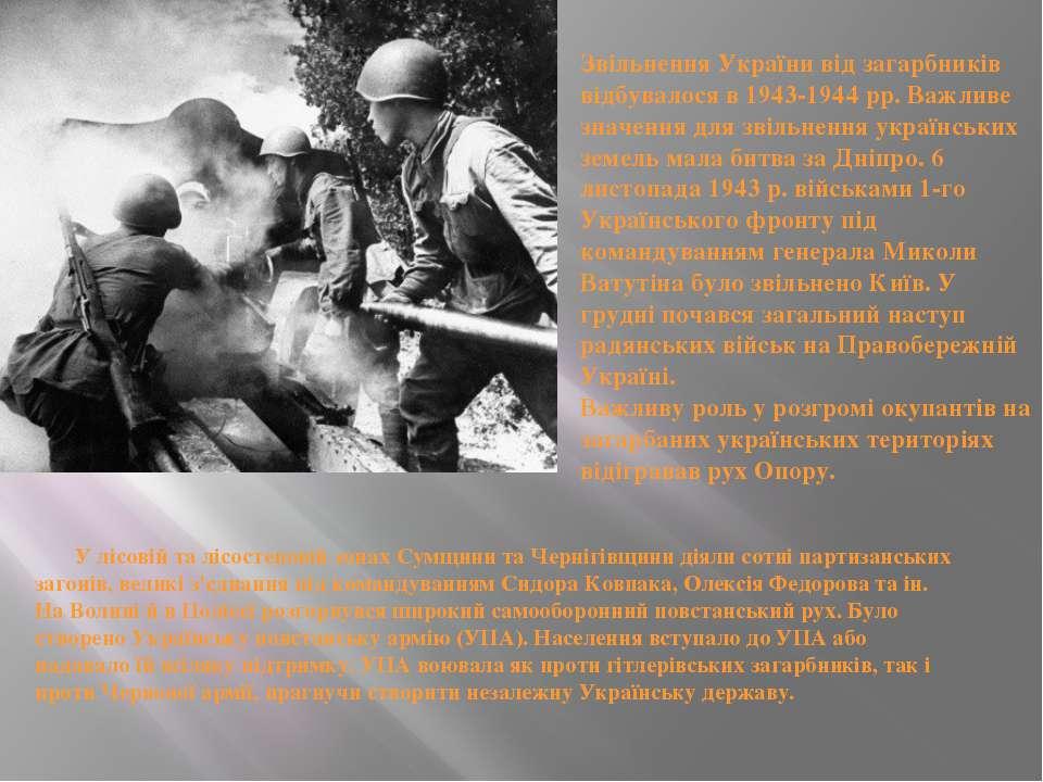 У лісовій та лісостеповій зонах Сумщини та Чернігівщини діяли сотні партизанс...
