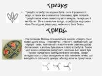 Тризуб є атрибутом водних богів, сили й родючості води, а також він символізу...