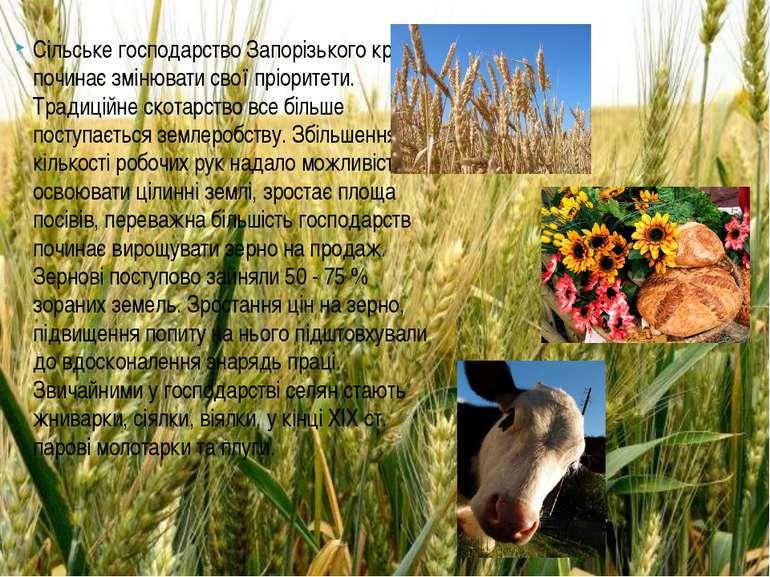 Сільське господарство Запорізького краю починає змінювати свої пріоритети. Тр...