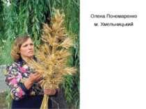Олена Пономаренко м. Хмельницький