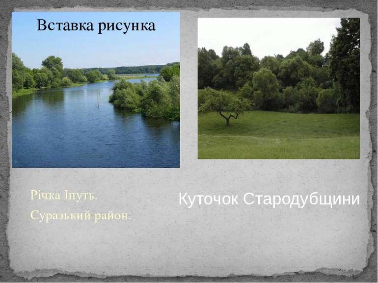 Річка Іпуть. Суразький район. Річка Іпуть. Суразький район. Куточок Стародубщ...
