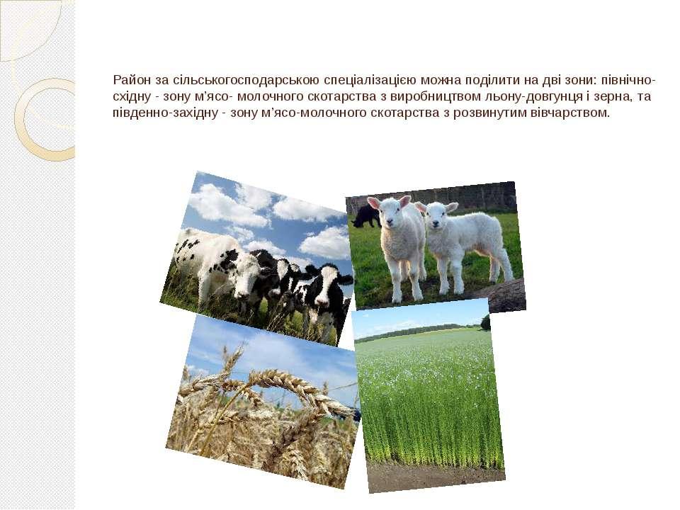 Район за сільськогосподарською спеціалізацією можна поділити на дві зони: пів...