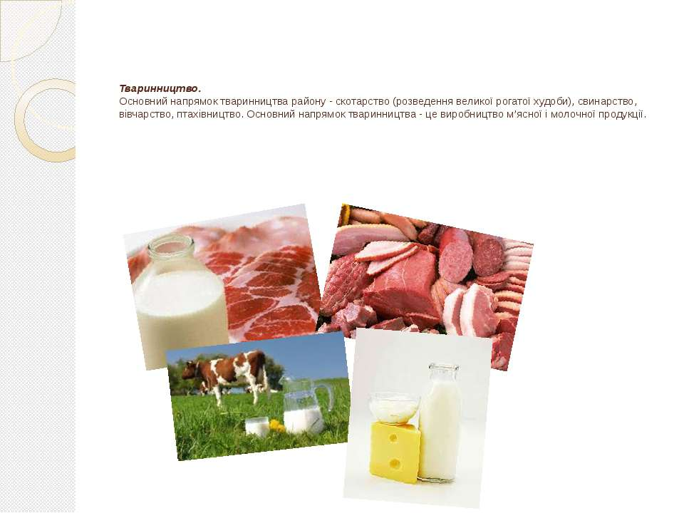 Тваринництво. Основний напрямок тваринництва району - скотарство (розведення ...