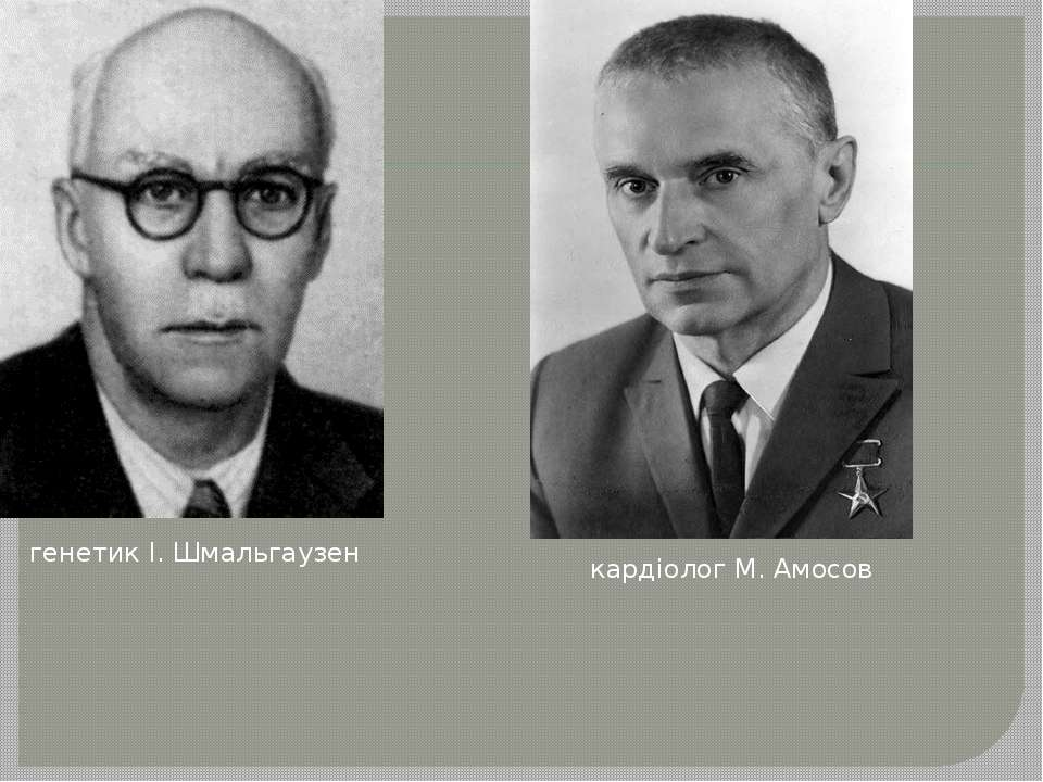 генетик І. Шмальгаузен кардіолог М. Амосов