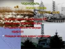 Чорнобиль… полин-трава Мертва зона Всесвітньовідома Чорнобильська АЕС Чорний ...