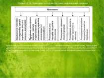 Основу системи національних рахунків складають зведені рахунки, що є балансов...