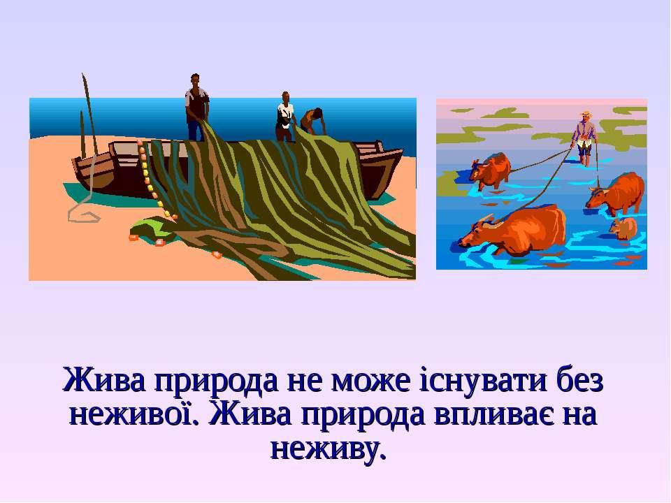 Жива природа не може існувати без неживої. Жива природа впливає на неживу.