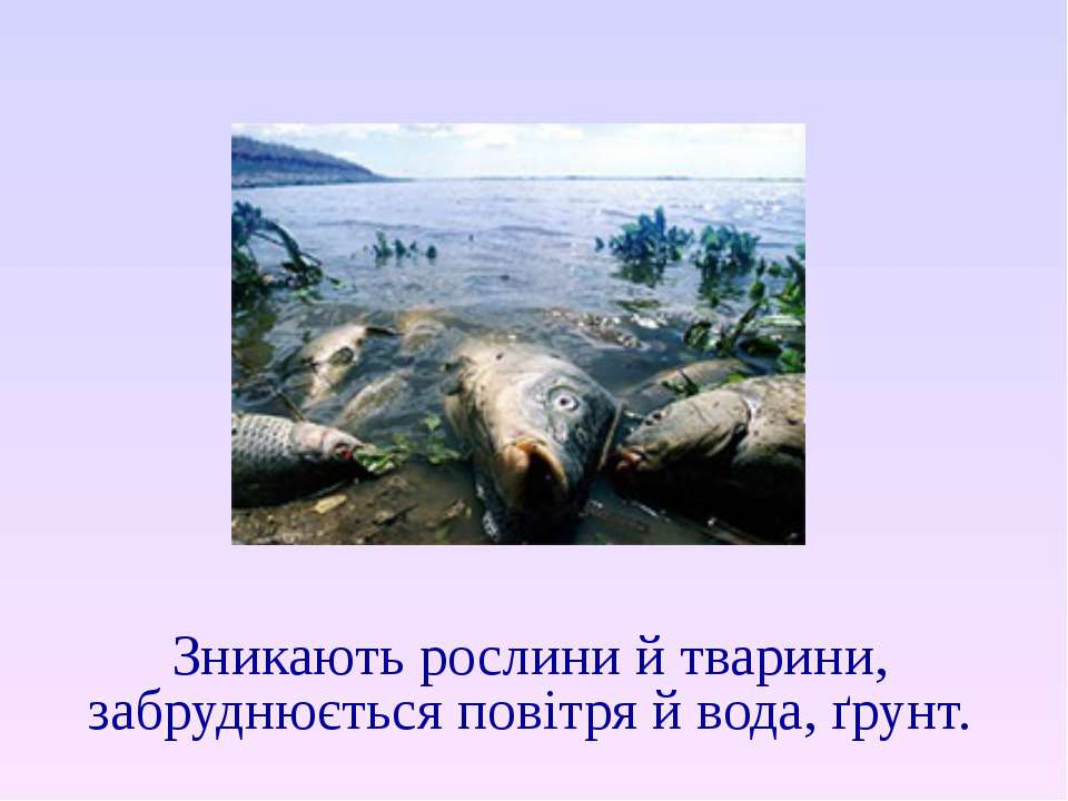 Зникають рослини й тварини, забруднюється повітря й вода, ґрунт.