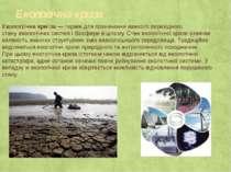 Екологічна криза Екологі чна кри за— термін для позначення важкого перехідно...