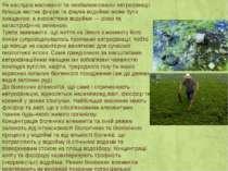 Як наслідок масованої та незбалансованої евтрофікації більша частна флори та ...
