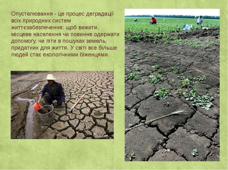 Опустелювання - це процес деградації всіх природних систем життєзабезпечення:...
