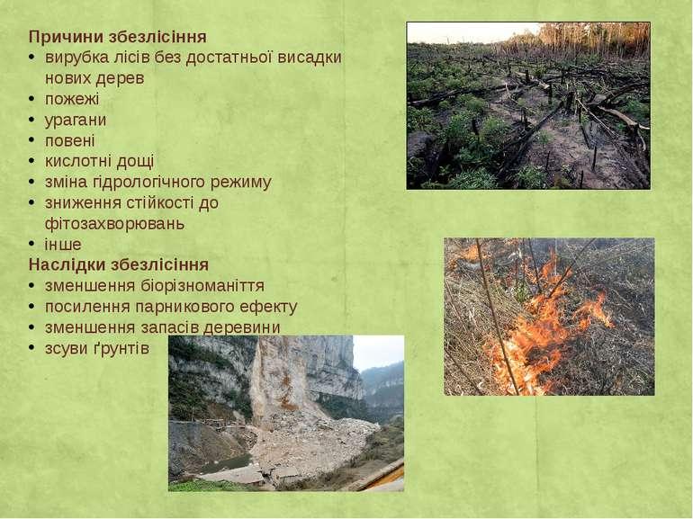 Причини збезлісіння вирубка лісів без достатньої висадки нових дерев пожежі у...