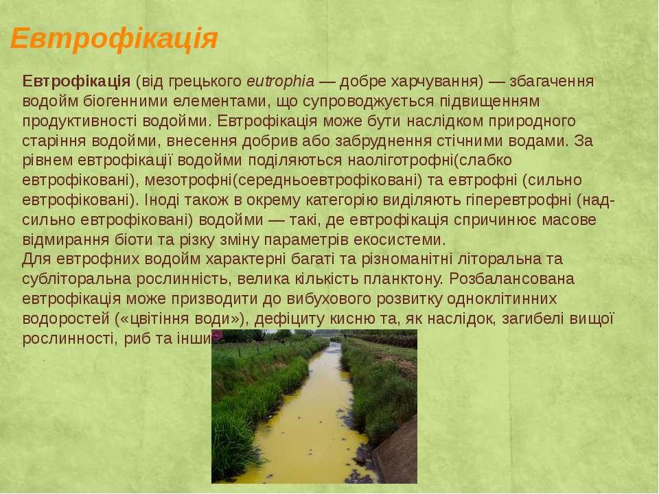 Евтрофікація Евтрофікація(відгрецькогоeutrophia— добре харчування)— збаг...