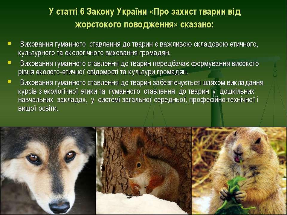 У статті 6 Закону України «Про захист тварин від жорстокого поводження» сказа...