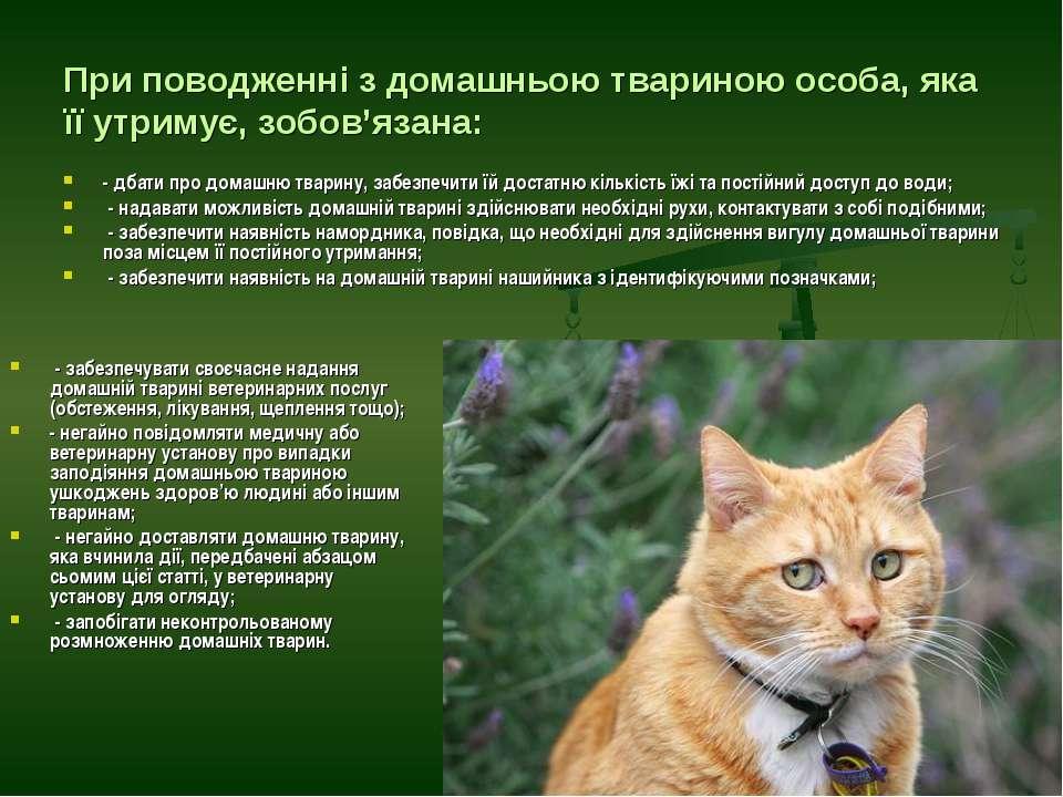 При поводженні з домашньою твариною особа, яка її утримує, зобов'язана: - дба...