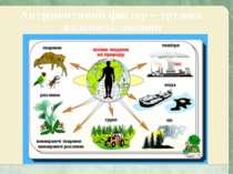 Антропогенний фактор – трудова діяльність людини