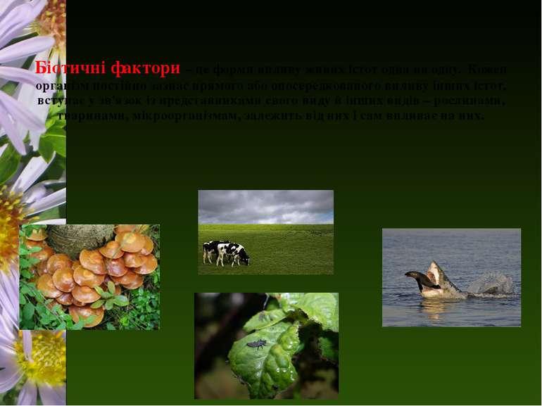 Біотичні фактори – це форми впливу живих істот одна на одну. Кожен організм п...