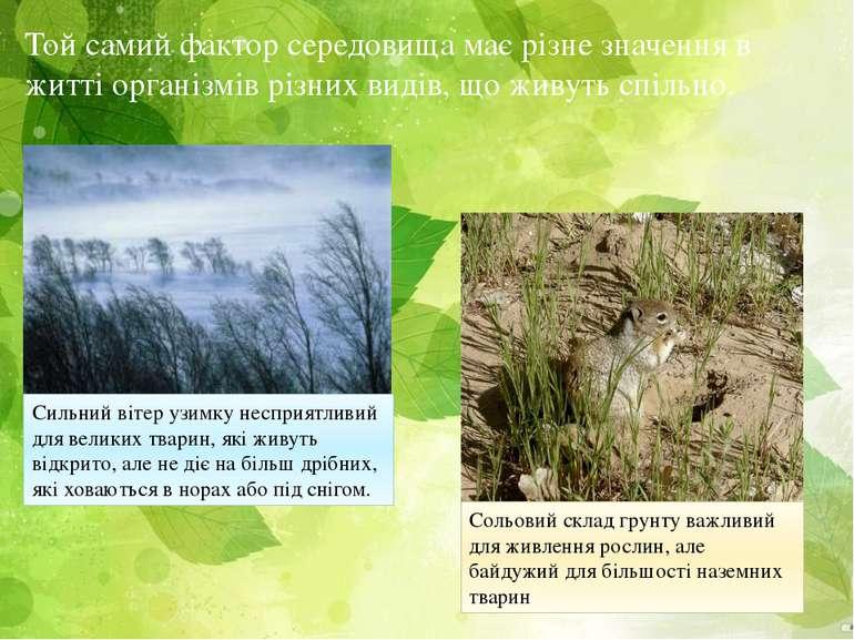 Той самий фактор середовища має різне значення в житті організмів різних виді...