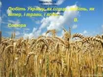Любіть Україну, як сонце, любіть, як вітер, і трави, і води… В. Сосюра