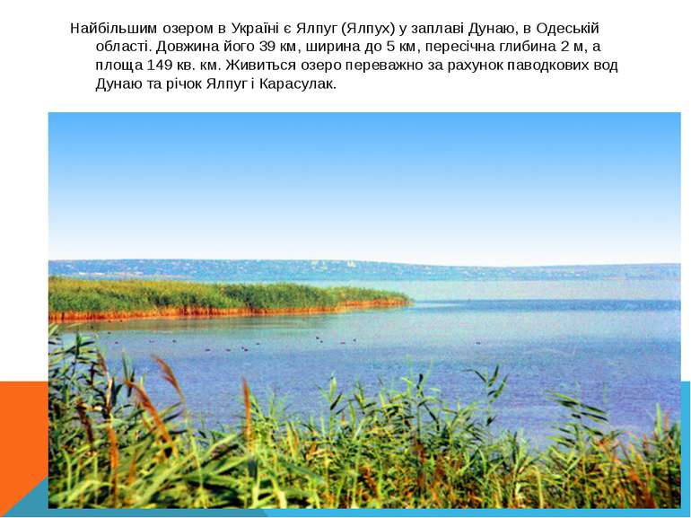 Найбільшим озером в Україні є Ялпуг (Ялпух) у заплаві Дунаю, в Одеській облас...