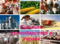 Сільське господарство в Україні