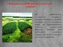 Виникнення надзвичайних екологічних ситуацій Під надзвичайними екологічними с...
