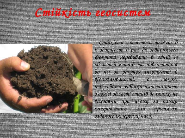 Стійкість геосистеми полягає в її здатності в разі дії зовнішнього фактора пе...