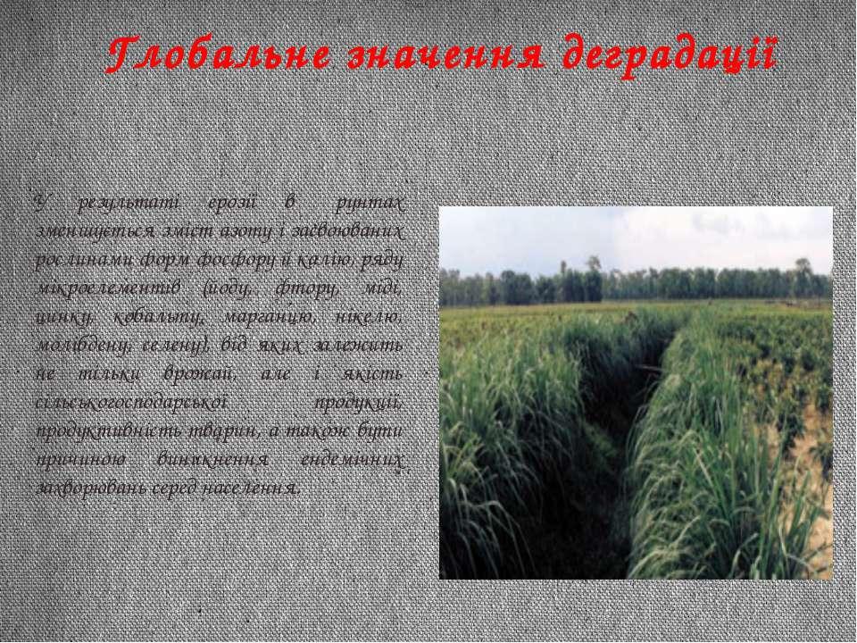 Глобальне значення деградації У результаті ерозії в ґрунтах зменшується зміст...