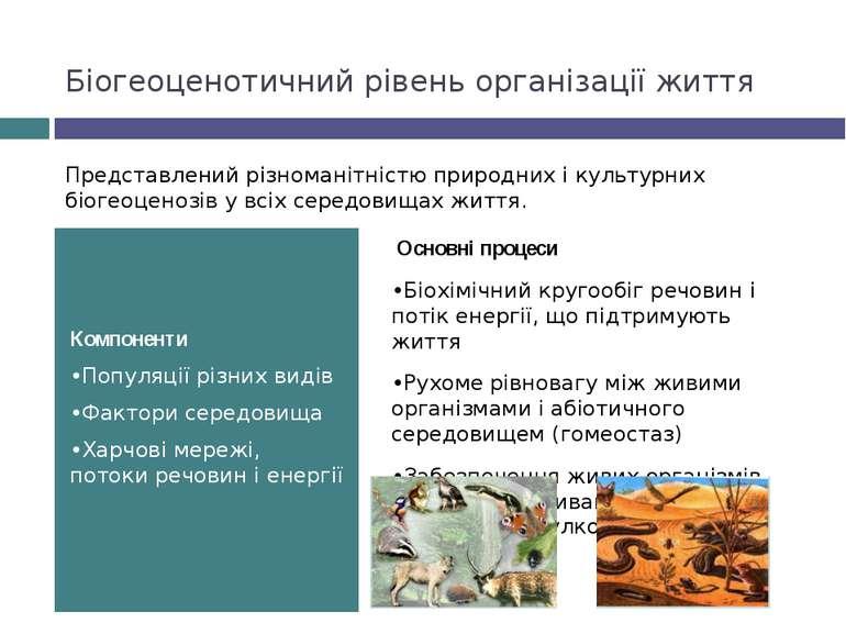 Біогеоценотичний рівень організації життя Компоненти •Популяції різних видів ...