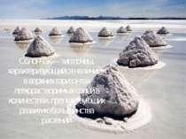 Солончак— типпочвы, характеризующийся наличием в верхних горизонтах легкора...