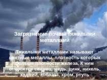 Загрязнение почвы тяжелыми металлами Тяжелыми металлами называют цветные мета...
