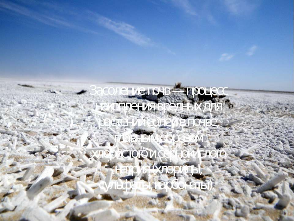 Засоление почв— процесс накопления вредных для растений солей в почве, главн...