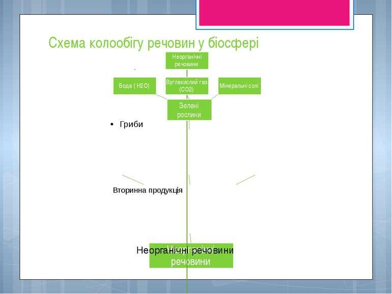 Схема колообігу речовин у біосфері Неорганічні речовини Вода ( Н2О) Вуглекисл...