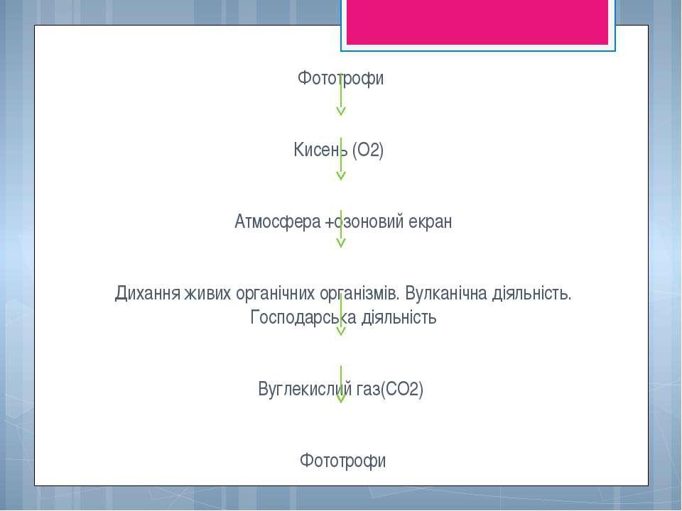 Фототрофи Кисень (О2) Атмосфера +озоновий екран Дихання живих органічних орга...