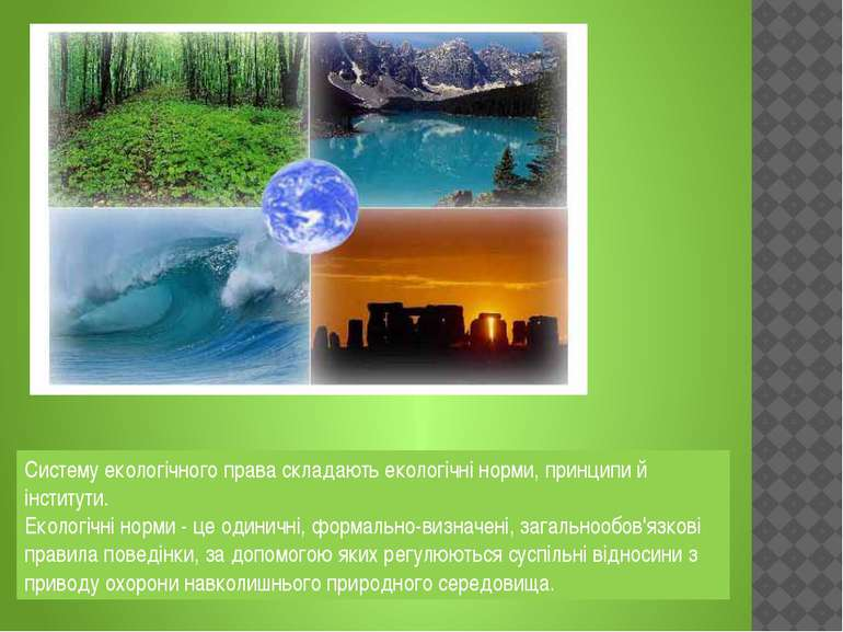 Систему екологічного права складають екологічні норми, принципи й інститути. ...